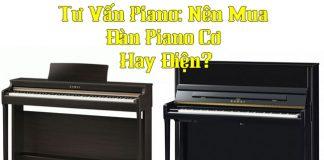 dan-piano-dien-hay-piano-co